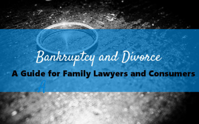 Bankruptcy and Divorce: A Guide for Family Lawyers and Consumers